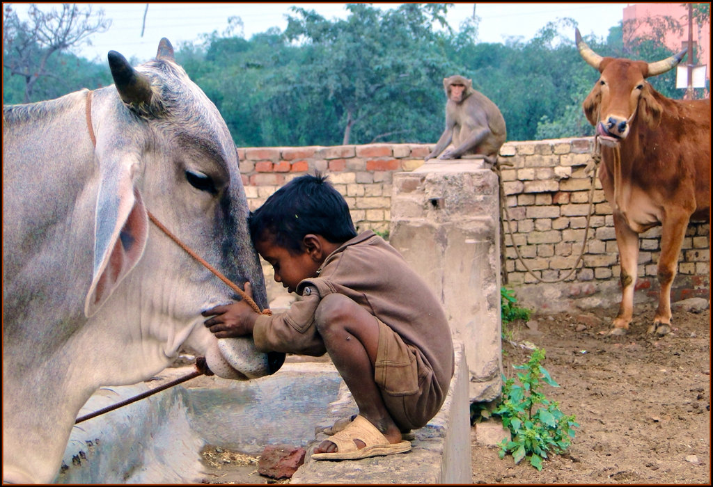 children_and_animals_____by_indiangal