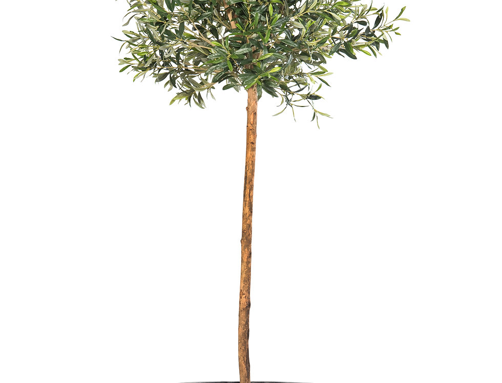 Artificial Olive Tree with Geo Round Planter
