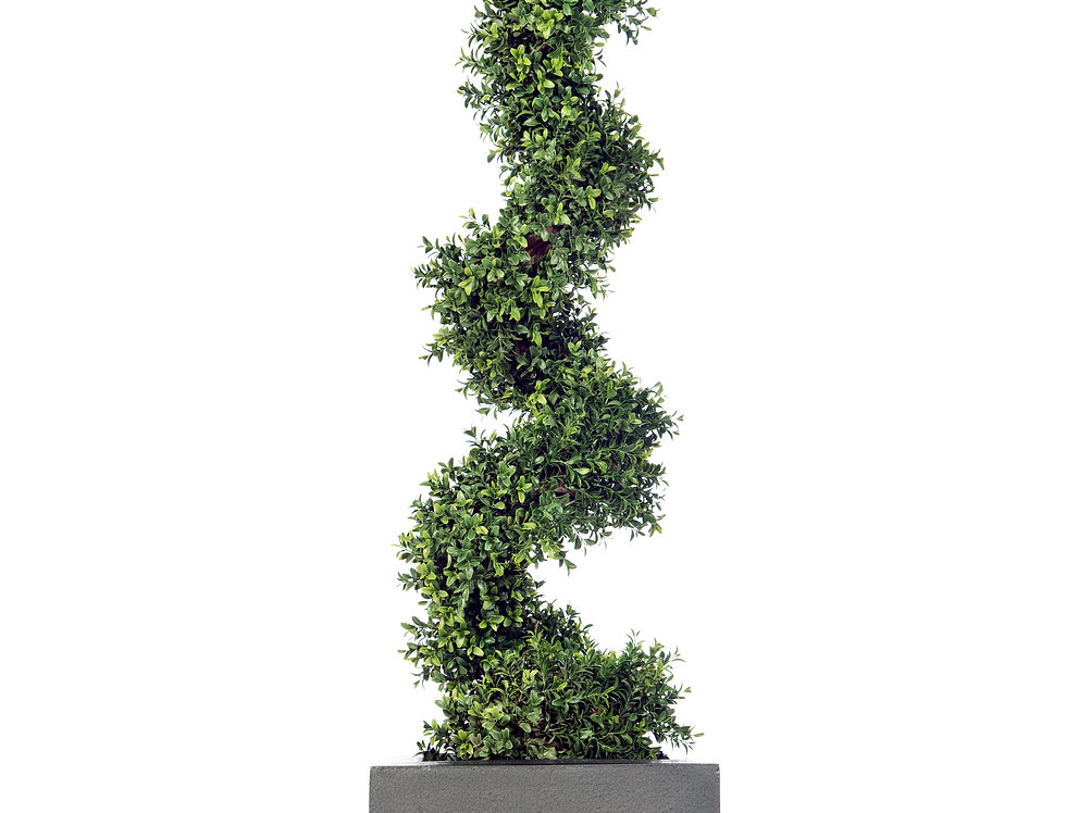 Artificial Spiral Box Tree with Geo Cube Planter
