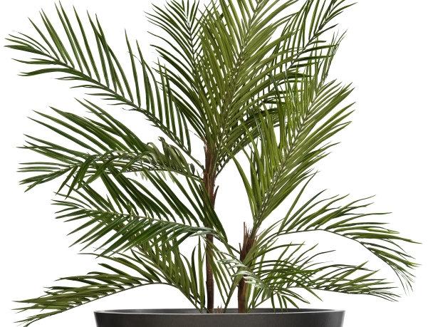 Artificial Areca Palm with Bowl Planter