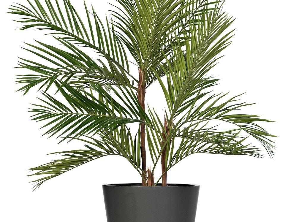 Artificial Areca Palm with Geo Round Planter