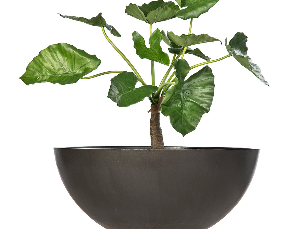 Artificial Alocasia with Bowl Planter
