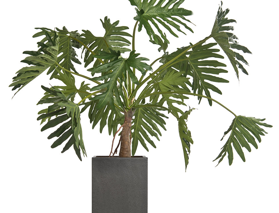 Artificial Philodendron with Geo Square Planter