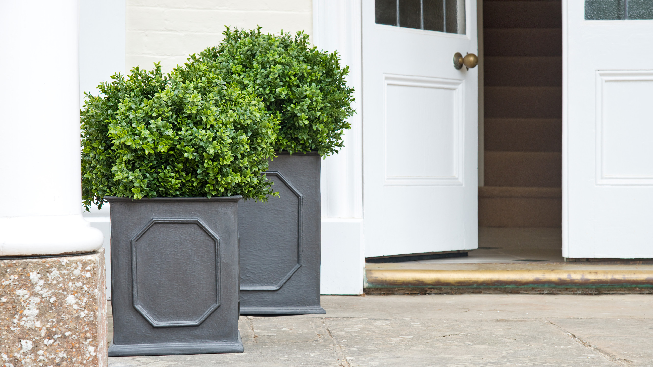 Artificial Box Balls in Stuart Planters