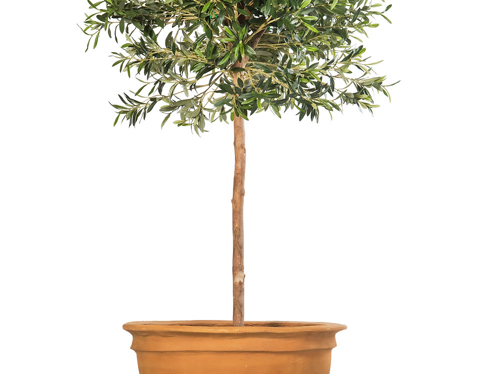 Artificial Olive Tree with Plain Planter