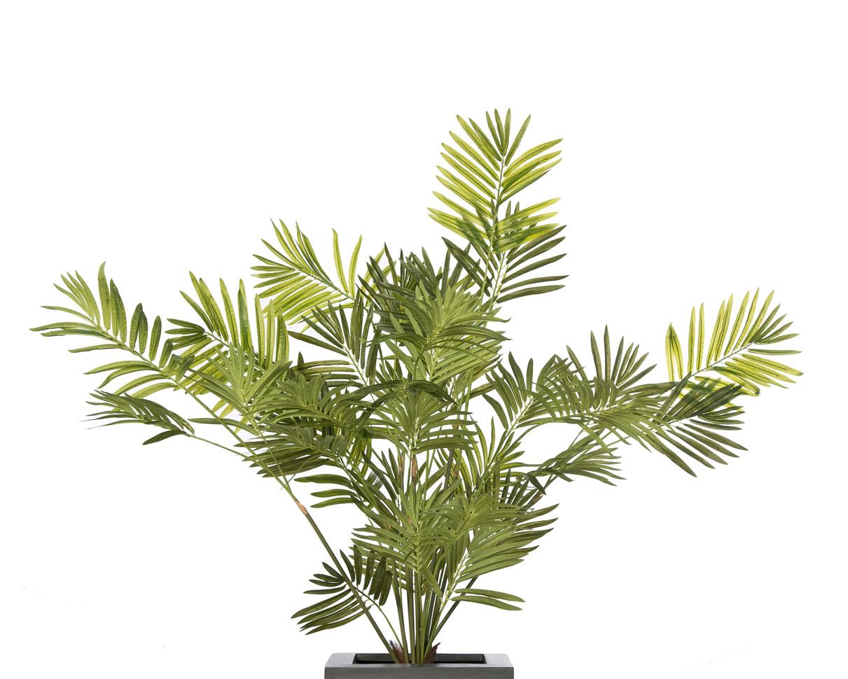 Artificial Kentia Palm.jpg