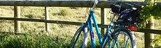 cycling-on-sark.jpg