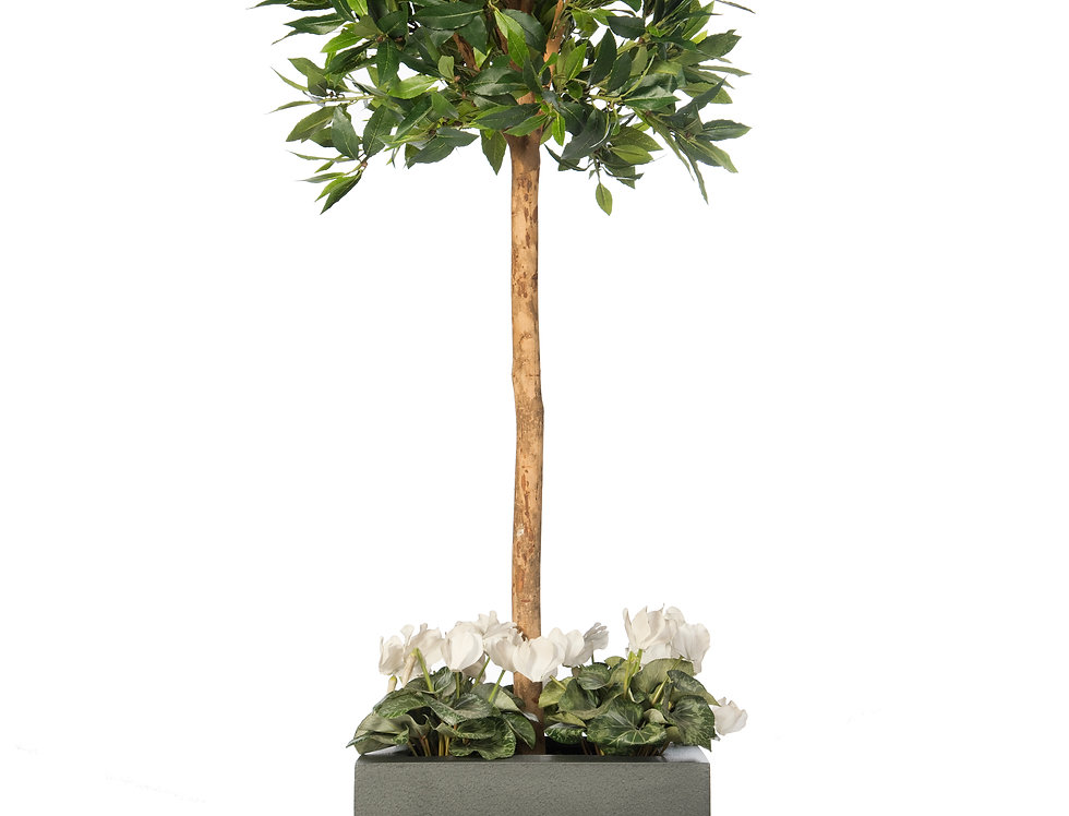 Artificial Bay Tree with Cyclamen and Geo Cube Planter