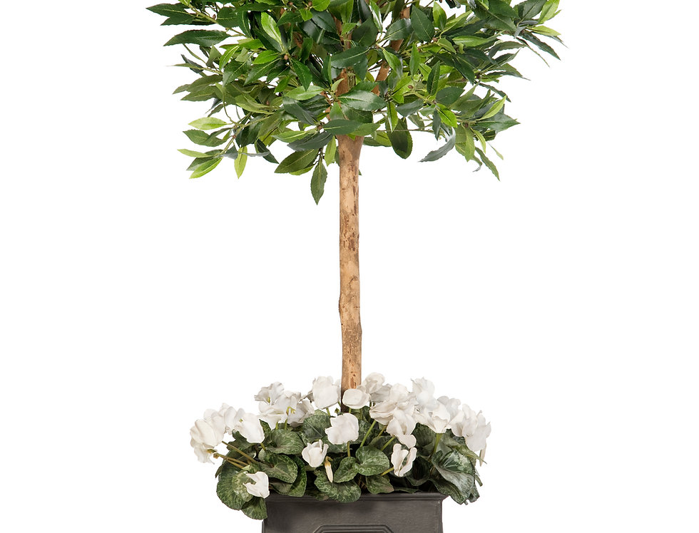 Artificial Olive Tree with Cyclamen and Stuart Planter