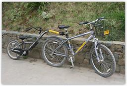 avenue-cycles-tagalong.jpg