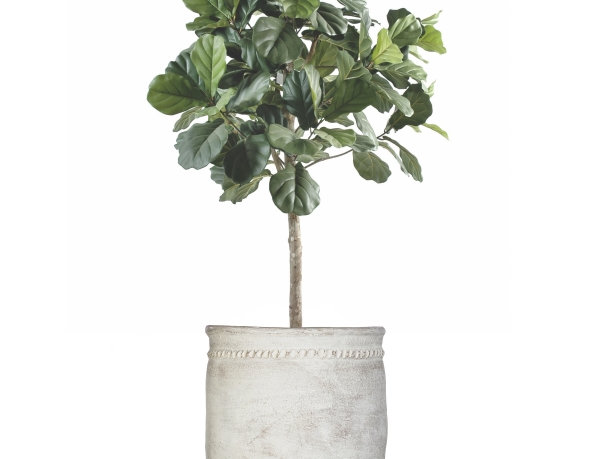 Artificial Lyrata Tree with Mediterranean 2 Planter & Stand