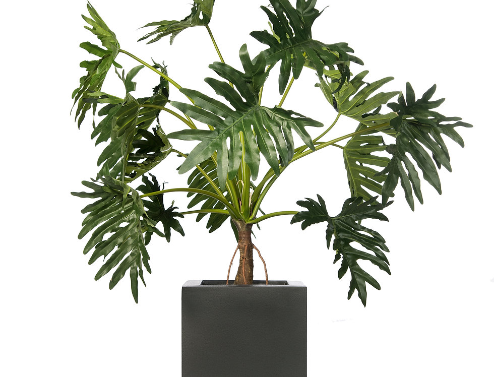 Artificial Philodendron with Geo Cube