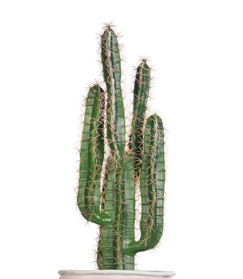 Artificial Cactus Finger.jpg