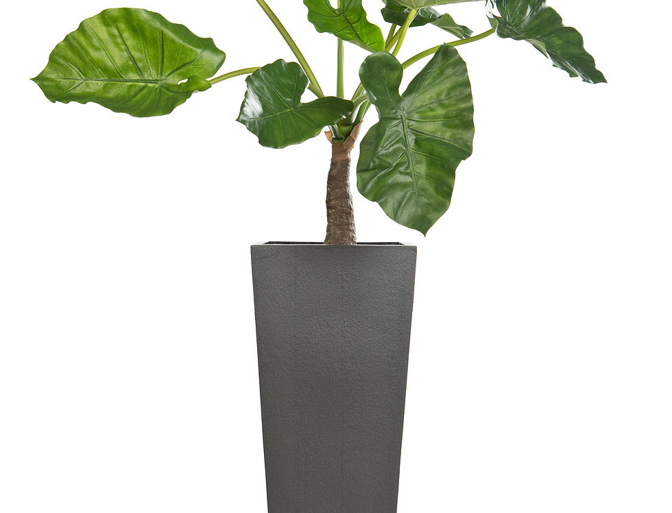 Artificial Alocasia Plant with Geo Tapered Square Planter