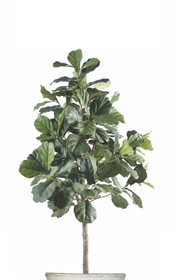 Artificial Lyrata Tree.jpg