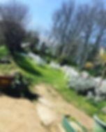 fleur-du-jardin-restaurant-sark3.jpg