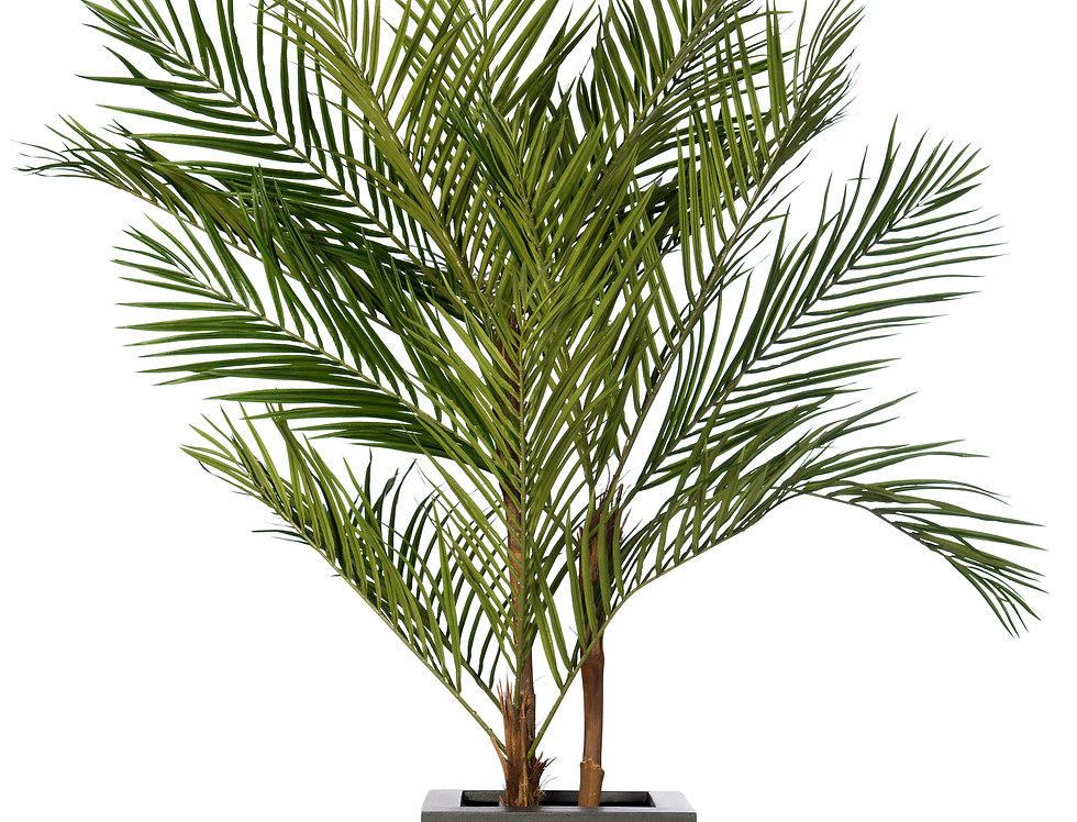 Artificial Areca Palm with Geo Cube Planter