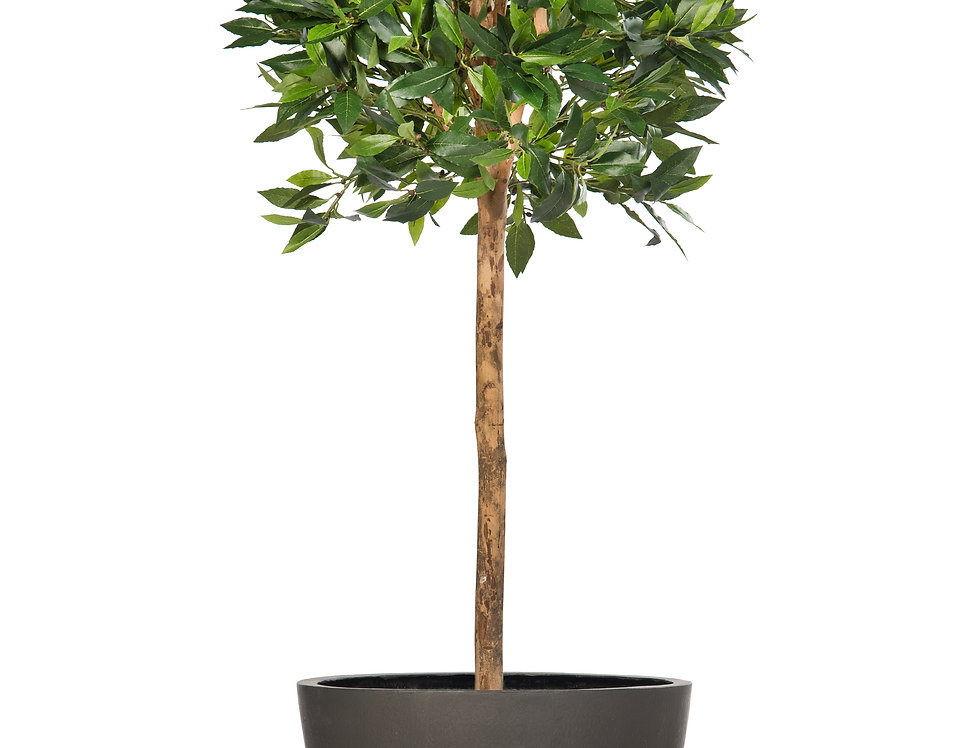 Artificial Bay Tree with Geo Round Planter