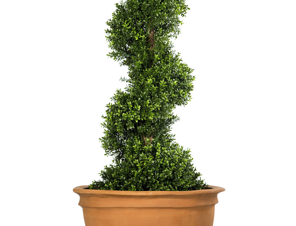 Artificial Spiral Box Tree with Plain Planter
