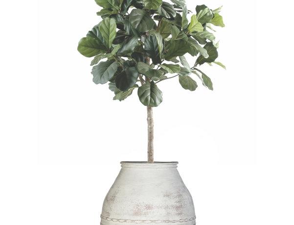 Artificial Lyrata Tree with Mediterranean 1 Planter