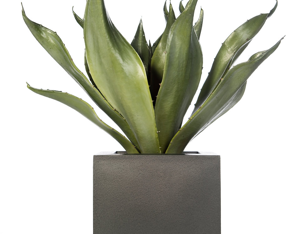Artificial Agave with Geo Cube Planter