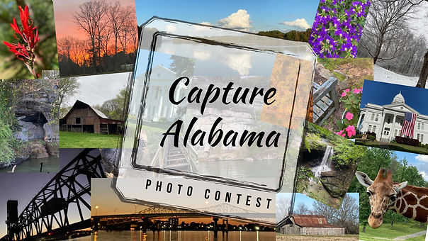 ad for photo contest (3).jpg