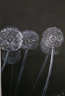 The Dandelions. Acrylics