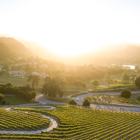 Carmel Valley Ranch Drone-5.jpg