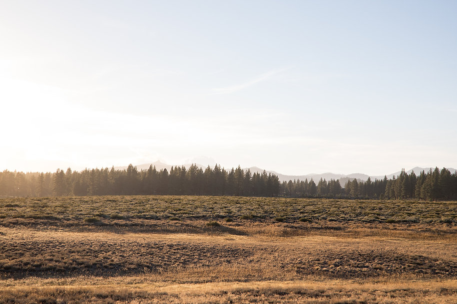 Martis Valley landscapes-36.jpg