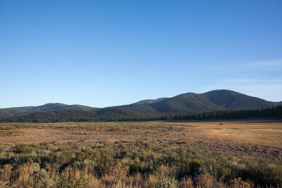 Martis Valley landscapes-28.jpg