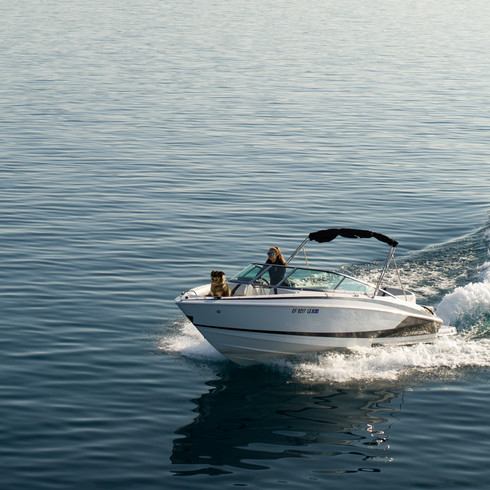 Tahoe City Marina Boat Rentals-1.jpg