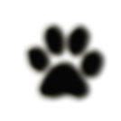 cat's paw.png