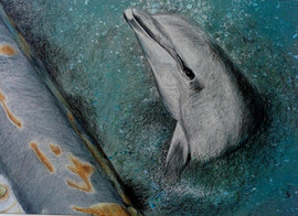 Danny the Dolphin - coloured pencil with