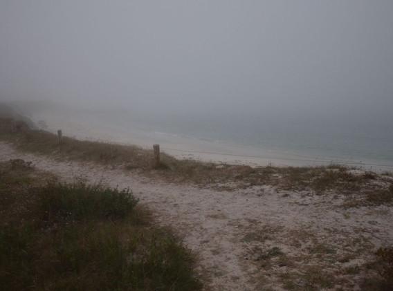 paysage-dunes-1200.jpg