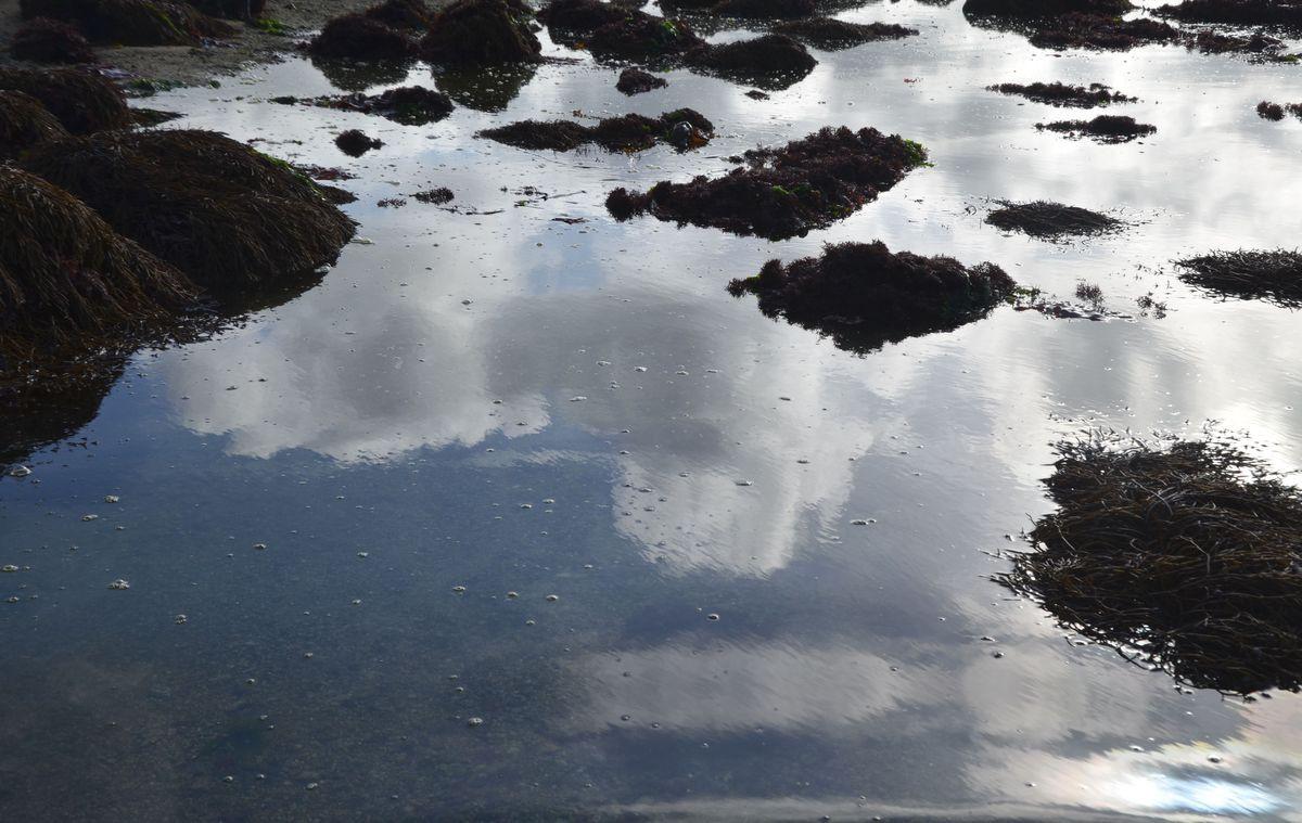 terre-mer-1200.jpg
