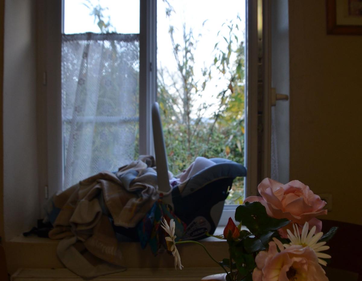 vase-roses-marguerites.jpg
