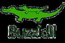 Buzzidil_Logo.png