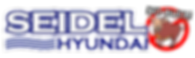 Seidel Hyundai No Bull Cartoon Double 3