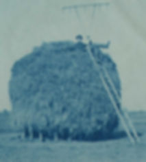 1-man-on-a-salt-marsh-hays.jpg