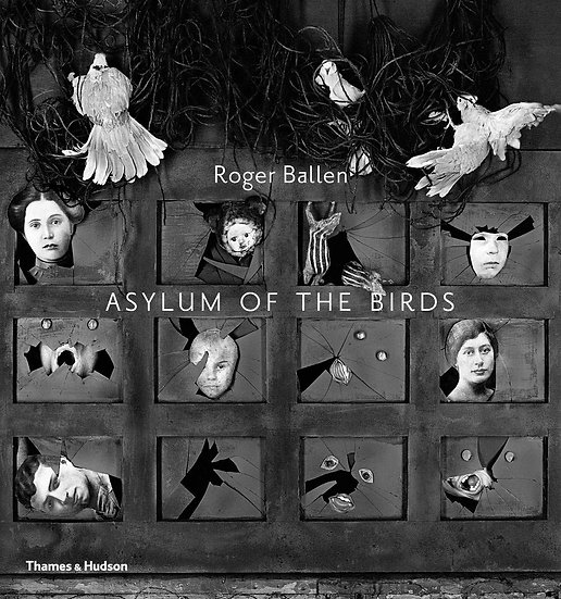 Asylum of the Birds