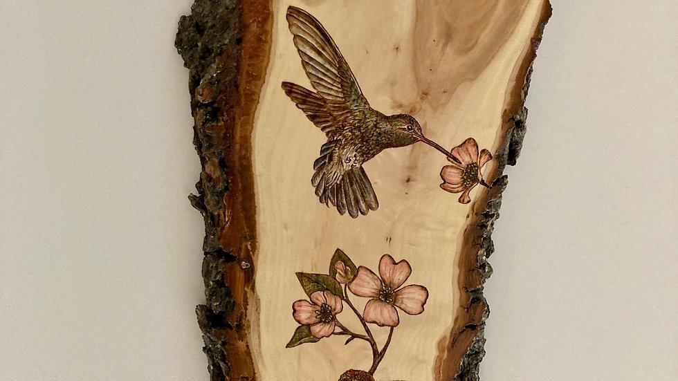 Dogwood Hummingbirds