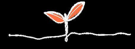 planta-pequena-desenhada-em-branco-com-as-folhas-laranjas.png