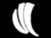 logo wflow