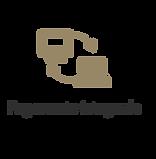 icone pagamento integrado