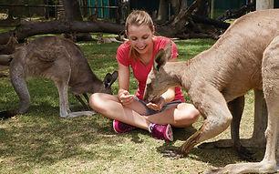 Luxury Trip Planner | GeoLuxe Travel | woman feeding kangaroos