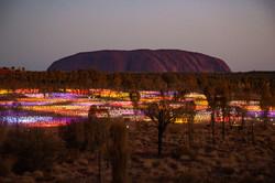 Custom Australia Vacation | GeoLuxe | colorful field