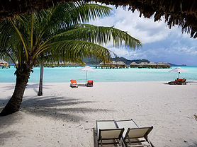 GeoLuxe Travel Testimonials | Two chairs on a beach under a palm tree | Luxury Travel Consultant