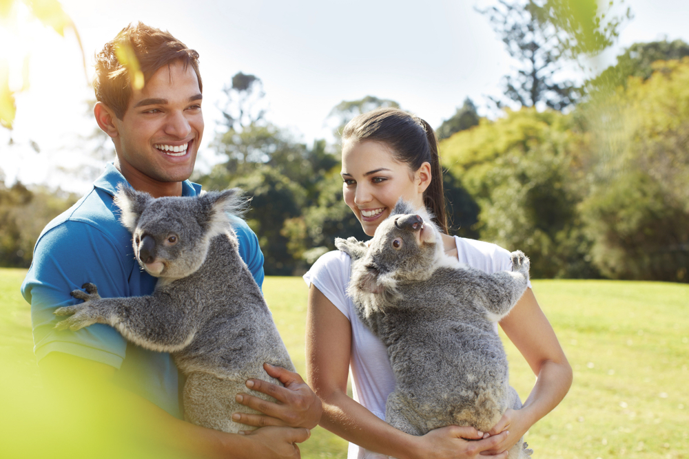 Custom Australia Vacation | GeoLuxe | couple holding koalas