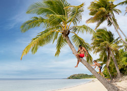 Fiji Trip Planner   GeoLuxe Travel   man on a palm tree