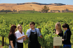 Custom Australia Vacation | GeoLuxe | People at a winery